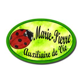 Badge Métal Coccinelle