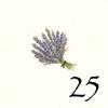 25.Lavande