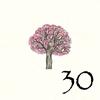 30.Cersier