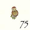 75.Chouette