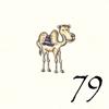 79.Chameau