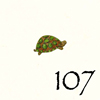107.Tortue